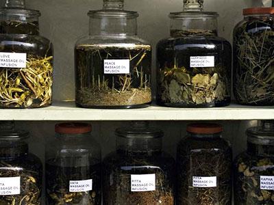 Wild Earth Nepal infusing herbs