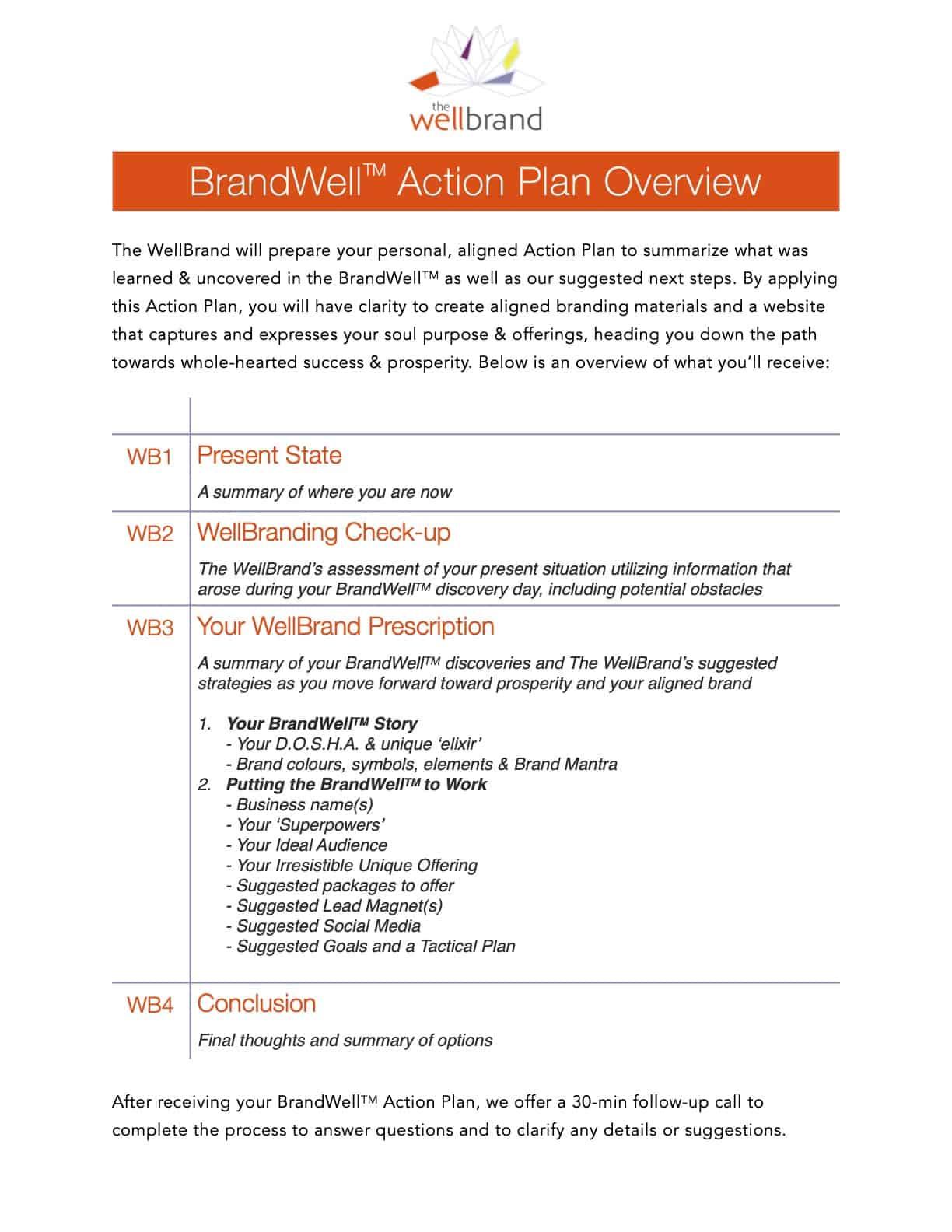 WelBrandl Action Plan Client Overview
