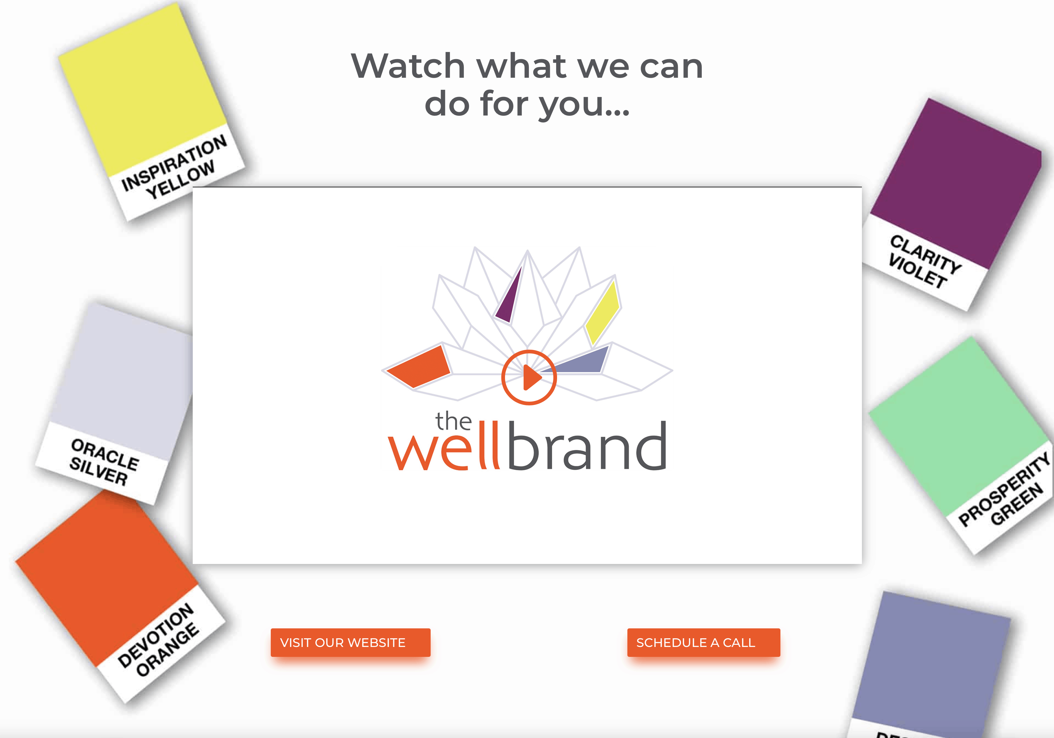 Introducing The WellBrand video